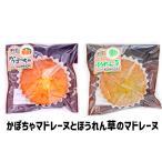 ほうれん草×4かぼちゃ×4のマドレーヌ1箱合計8個入 ギフトボックス ほうれん草 かぼちゃ お菓子 マドレーヌ 北海道から直送 贈答用 ポーラスター