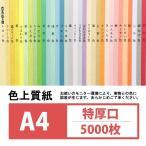 (印刷用紙 文集 本文) 色上質紙 特厚口 A4 5000枚入り若竹