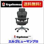 オフィスチェア エルゴヒューマン プロ  (ハイタイプ) Ergohuman PRO EHP-HAM
