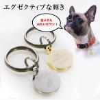 迷子札 犬 猫 迷子 防止 丸小型 ネームタグ ドッグタグ ペットタグ 送料無料