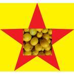 レモン3kg 国産レモン わけあり/訳あり/ワケあり お買得 数量限定 レモン (和歌山産3kg)