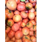 (トマト2kg)【和歌山産】【わけあり/訳あり/ワケあり】(完熟)【昔なつかしい味のトマト】【土で育てた桃太郎トマト】2kg