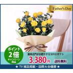 ミニバラ 鉢植 花 ギフト 父の日 プレゼント フラワー 鉢 鉢植 鉢植え 鉢花 5号 5号鉢 その他 送料無料