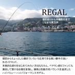 ダイワ(Daiwa) 磯竿 スピニング リーガル 4-45遠投 釣
