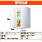 冷蔵庫 小型 0°C~65°C 8L 10L 温度調節 家庭用 車載用 ミニ冷蔵庫 AC110V/DC12V 電源式 保温/保冷2システム
