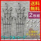 アイアントレリス ガーデン リーフ / バード 2枚組
