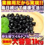 野生種 ワイルドブルーベリー大容量 1kg ブルーベリー ドライフルーツ アメリカ産