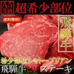 シャトーブリアン 飛騨牛フィレステーキ 100g×5 A5等級