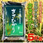 お米 5kg 28年産 宮城県産 特別栽培米 ささひかり 幻のササニシキ 精米 白米