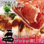 豚ロース ブロック 塊肉 約1kg 豚肉 ポーク 国産 蔵王牧場 JAPAN X かたまり ステーキ とんかつ 煮豚