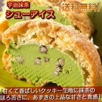 ショッピングアイスクリーム シューアイス 宇治抹茶/まっ茶 12個入