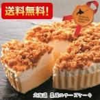 北海道 星屑のチーズケーキ プレーン お取り寄せ スイーツ