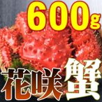 花蟹 - カニ かに 花咲ガニ オス 600g 活目700g ボイル冷凍 北海道特産 即納 御歳暮 ギフト 年末年始