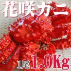 花蟹 - カニ かに 花咲ガニ オス 1.0kg 活目1.2kg ボイル冷凍 北海道特産 お歳暮2017 年末年始配送OK