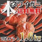 「極上」超特大本ズワイガニ2尾1.6kg(ボイル冷凍)送料無料!(即納)北海道特産 お歳暮2016 年末年始配送OK!