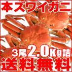「極上」本ズワイガニ3尾2.0kg詰(ボ...