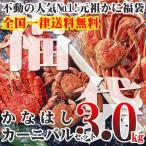 かなはしカーニバルセット3kg(ボイル冷...