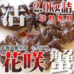Hanasaki Crab - カニ かに 蟹 北海道根室産 活 花咲ガニ 2.0kg詰 5-6尾 未冷凍 北海道特産