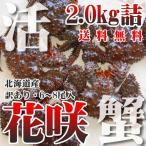Hanasaki Crab - カニ かに 蟹 訳あり 北海道産 活 花咲ガニ 2.0kg詰 6-8尾 未冷凍 北海道特産 即納 送料無料