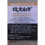 縄文ねぎ 苗 2.5号ポット 野菜苗 ネギ苗