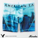 アメリカンイーグル ボクサーパンツ ボクサーブリーフ メンズ 鮫 ブルー サイズXS