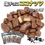 塩チョコココナッツ 50g×4個 高級塩「海人の藻塩」使用 メール便 送料無料