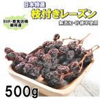 枝付き レーズン 500g 日本向け特選品 無添加・砂糖不使用