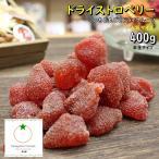 ドライフルーツ いちご 人気サイズ 500g つぶつぶ食感 メール便送料無料