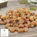 マスカットのドライフルーツ500g 無添加・砂糖不使用 【ネコポス送料無料】
