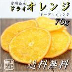 愛媛県産 ドライオレンジ お試し 70g 国産ドライフルーツ 送料無料
