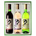 能登ワイン Aセット(3本セット)化粧箱入り【父の日】【お中元】【お歳暮】【ギフト】