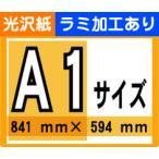 �ݥ����� ���� A1������ ���� ������ ��ߥ͡��Ȳù�����