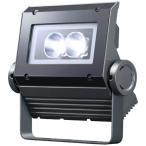 岩崎電気 ECF0398D/SAN8/DG(旧ECF0488D/SAN8/DG) LED投光器 レディオックフラッドネオ 30クラス(旧40W) 狭角 昼光色 ダークグレイ
