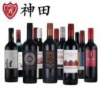 赤ワインセット 12本  金賞ワイン入り 赤字覚悟の赤ワインセット スペイン チリ 飲み比べ wine set