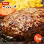 【訳あり】九州工場製造品 合挽き ふっくら ハンバー