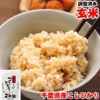 新米 2kg 令和元年産 お米 千葉県産 コシヒカリ 玄米 再調整済み ラッピング・お試し品など同梱対応不可
