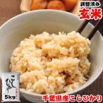 玄米 お米 5kg 令和元年産 千葉県産 コシヒカリ 再調整済み