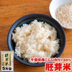 米 お米 5kg 28年度 千葉県産 胚芽米 こしひかり 栄養満点