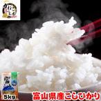 お米 29年度 富山県産 こしひかり 5kg