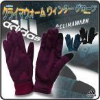 手袋 グローブ フリース メンズ レディース アディダス/クライマウォーム ウィンター グローブ DBL63