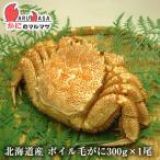 北海道産 活毛ガニ(ボイル可能)  300g×1尾 極上毛がに 旬 お取り寄せ ギフト お土産 通販