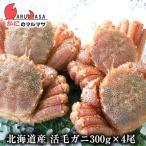 北海道産 活毛ガニ 300g×4尾セット 極上毛がに 旬 お取り寄せ ギフト お土産 通販