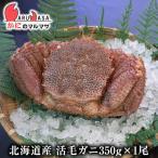 北海道産 活毛ガニ 350g 1尾