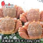 かに カニ 蟹 北海道産 活毛ガニ 350g×4尾セット 極上毛がに お土産 通販