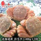 北海道産 活毛ガニ 400g×3尾セット 極上毛がに お取り寄せ ギフト お土産 通販