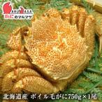北海道産 活毛ガニ(ボイル可能) 750g 1尾 極上毛がに お取り寄せ ギフト お土産 通販