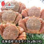 北海道産 活毛がに / 業務用2kg版 5尾セット(かに カニ 蟹)お土産 通販