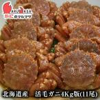 北海道産 活毛がに / 業務用4kg版 11尾セット(かに カニ 蟹)お土産 通販