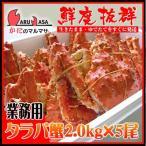 お中元 ギフト 北海道直送 タラバガニ2.0kg (冷蔵 チルド)