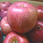 ご予約 送料無料 長野県産 サンふじ りんご 3kg 大玉